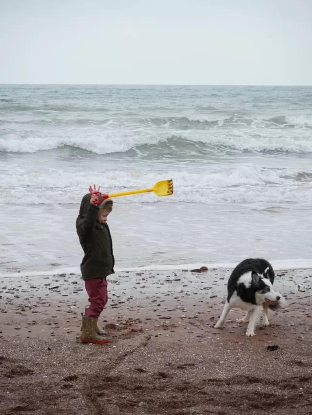 teasing the dog on the beach