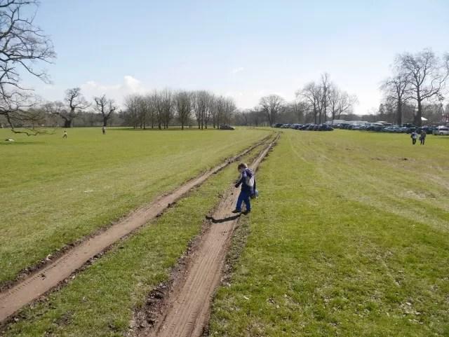 walking in the tracks across a field