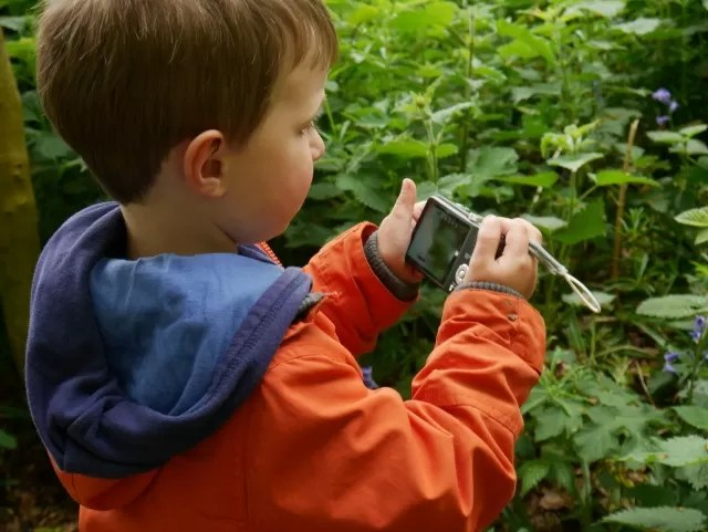 child photographing bluebells