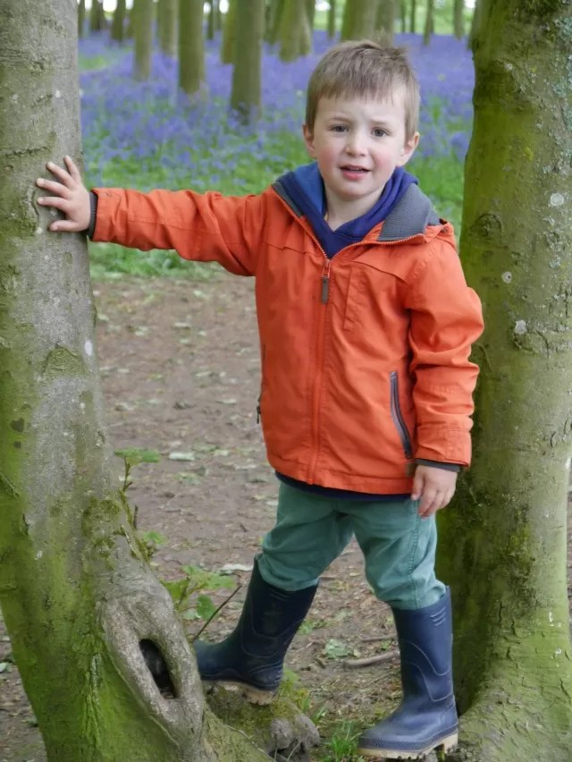 living arrows tree climbing boy in a bluebell wood