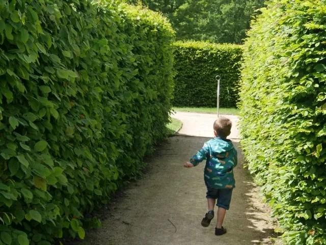 maze at trentham gardens