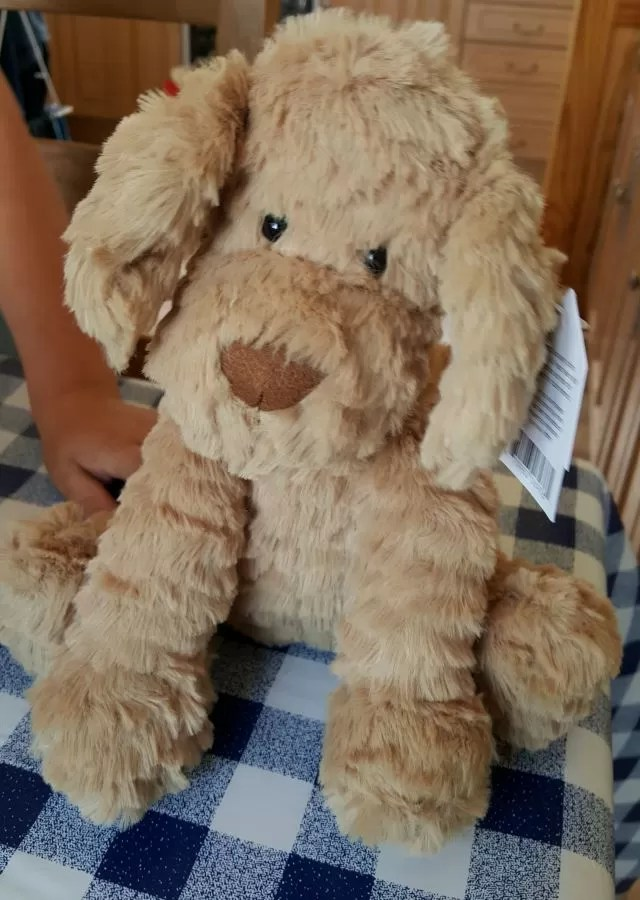 Jellycat dog - say it with bears