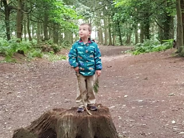 Standing tall at Rushmere Country Park