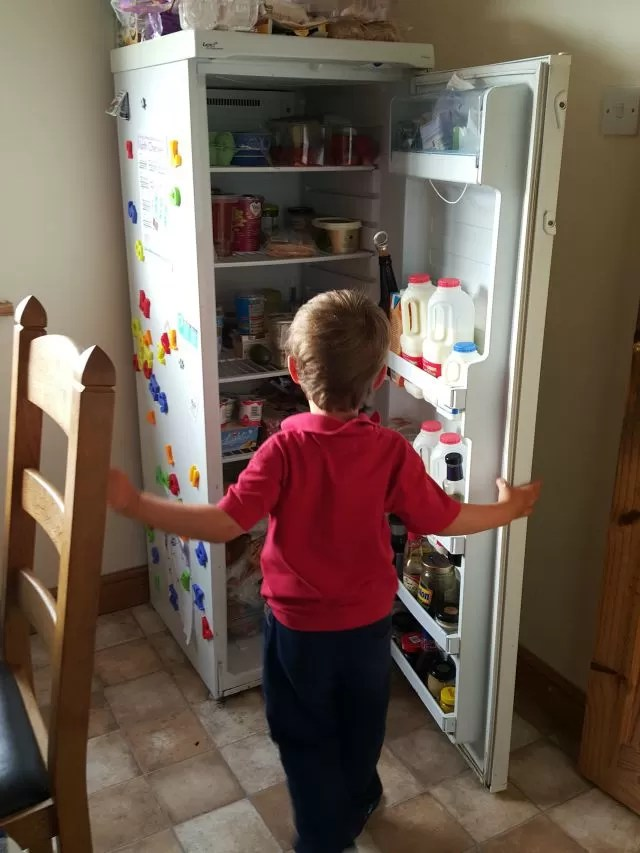 checking out the contents of the fridge