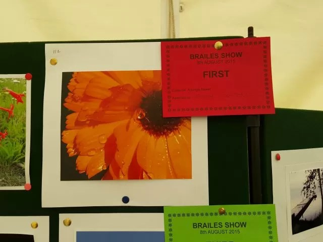 first prize in the photography single flower class at Brailes Show