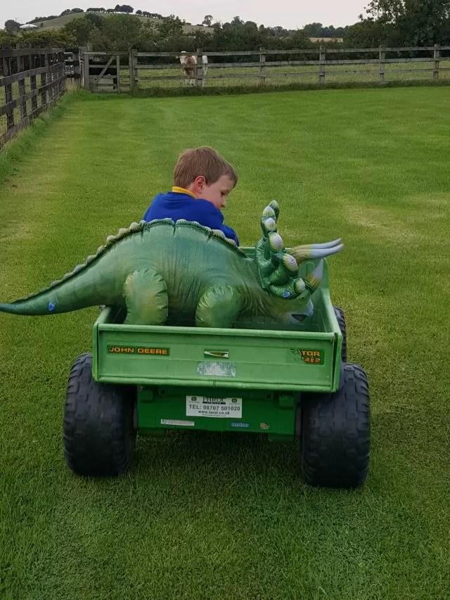 dinosaur on borad the gator