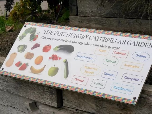 very hungry caterpillar garden