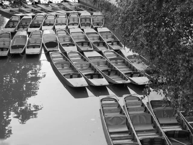 punts on the river isis