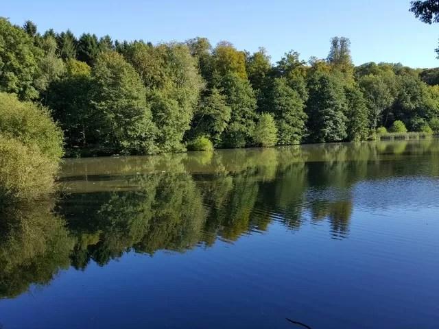 reflection in Wroxton Abbey lake