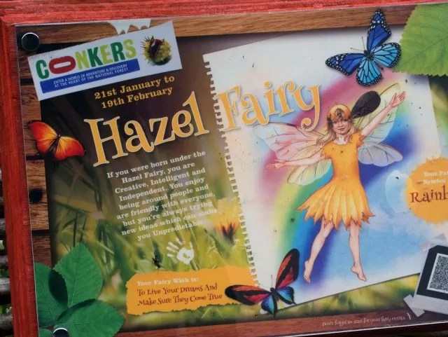 hazel fairy sign at conkers