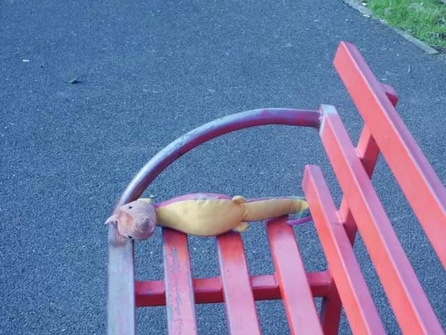 lost seahorse toy