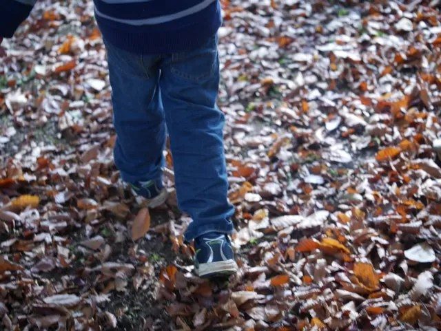 walking in autumn leaves