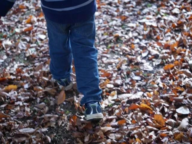 walking in autumn leaves