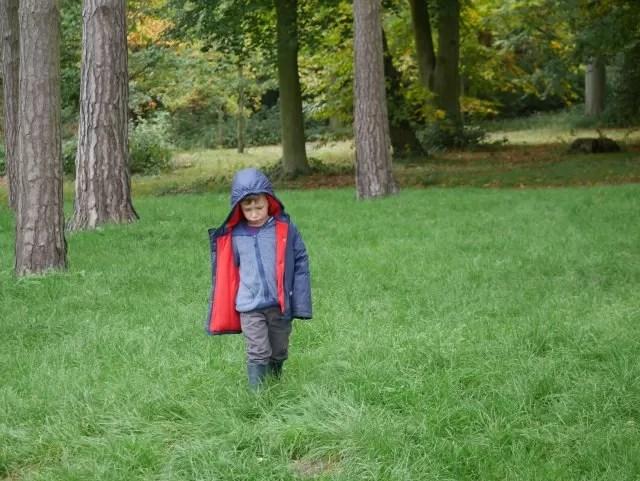 walking through the grass