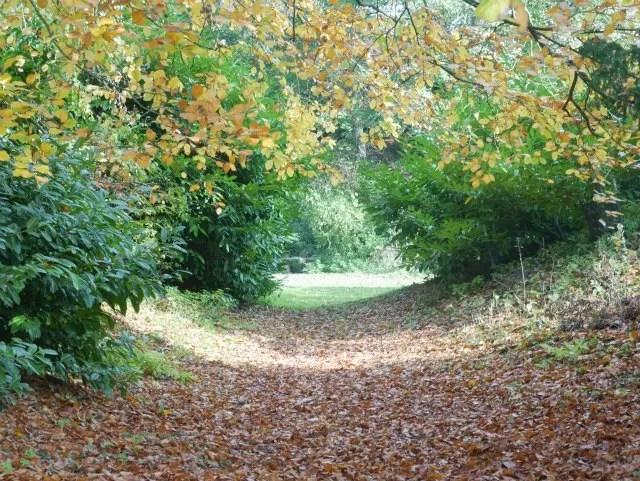 walkway of light