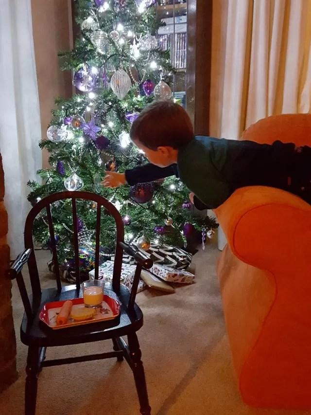 getting santa's snacks ready by the christmas tree