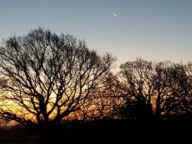 sunrise in December with crescent moon