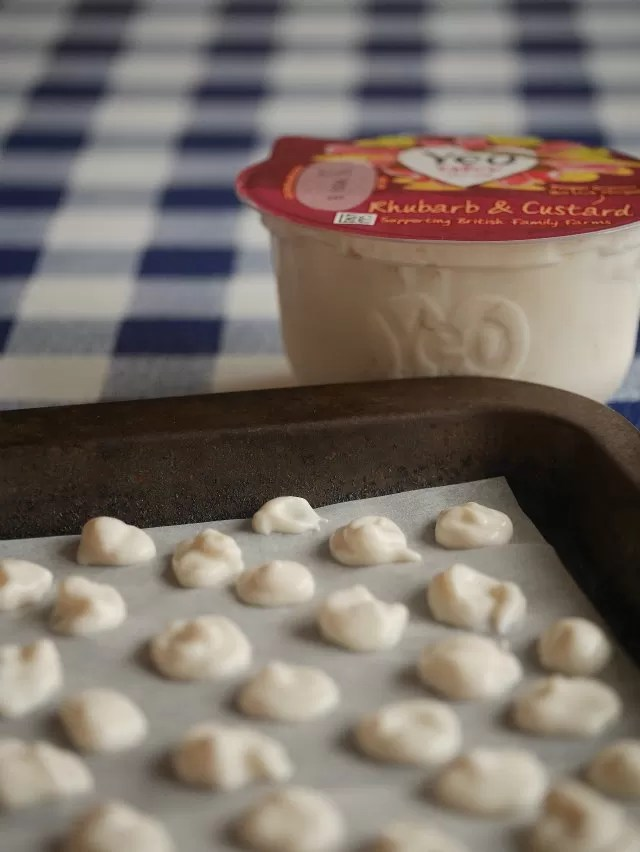 yoghurt making frozen yoghurt drops