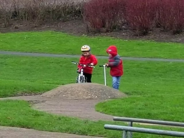 riding the bump in the park