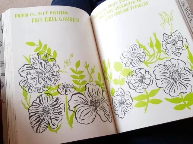 colouring in roses in Hello Nature book