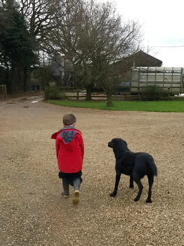 one boy and his dog