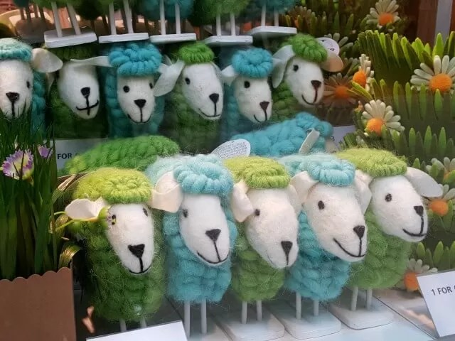 colourful sheep in Tiger