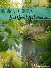 autumn at Batsford
