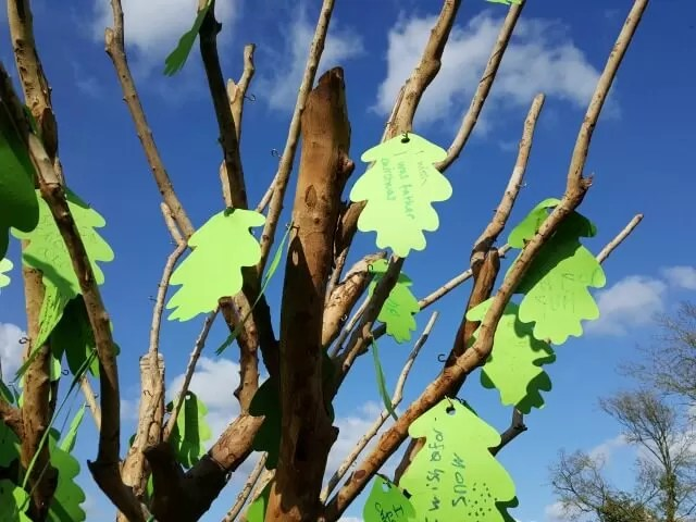 wishing tree at Stowe Gardens