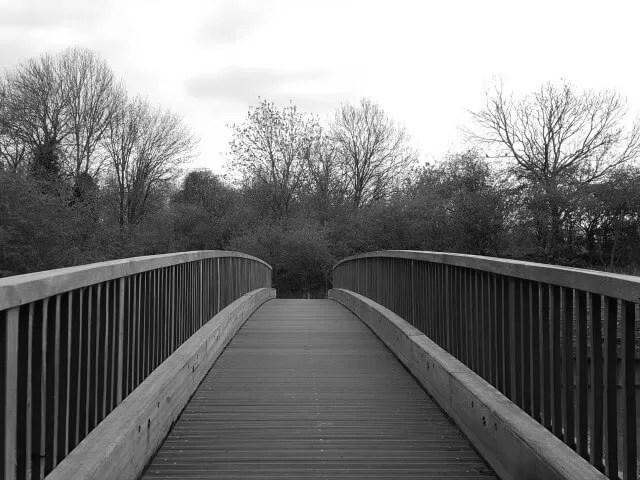 black and white bridge in Spiceball Park
