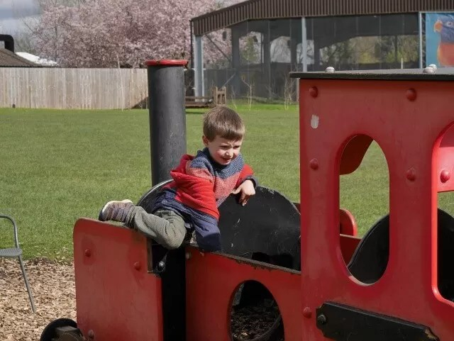 climbing on the play trains at Twycross zoo