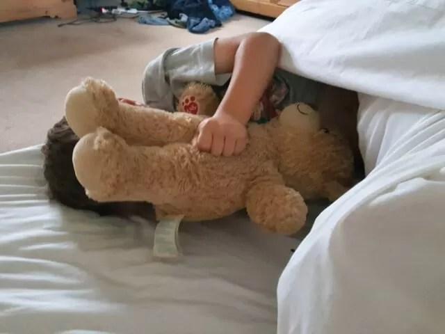 teddy bear hugs in the morning