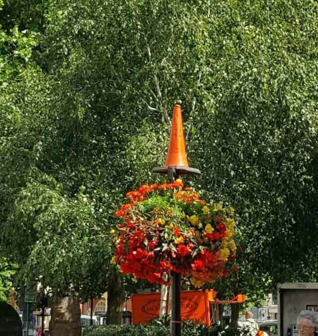 flowers in Banbury