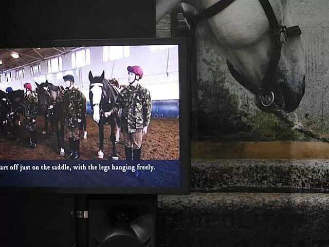 interactive quiz at Household cavalry museum