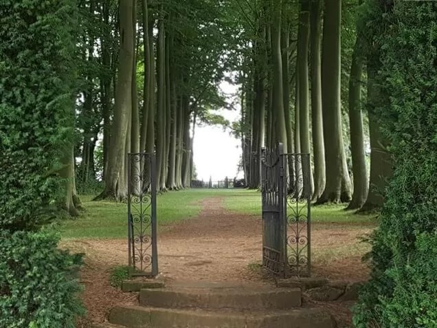 through the wooded gate