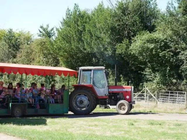 tractor-rides-at-odds-farm-park