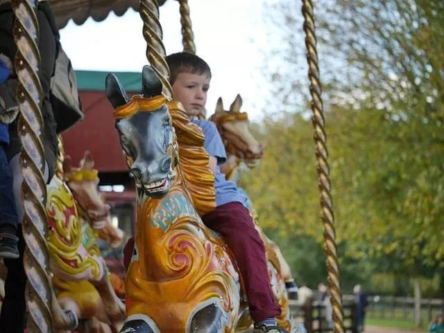 on the carousel at millets farm centre
