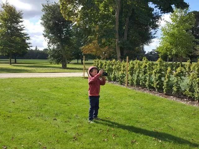 taking photos at blenheim palace