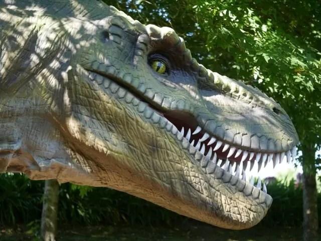 tyrannosaurus-rex-at-tamba-park