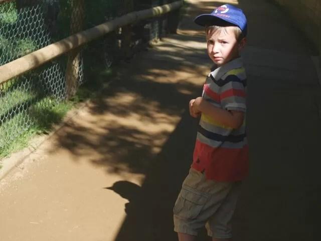 worrie-through-he-dino-trail