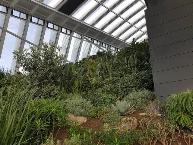 sky-garden-greenery
