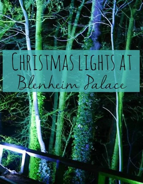 Christmas lights at Blenheim Palace - Bubbablue and me