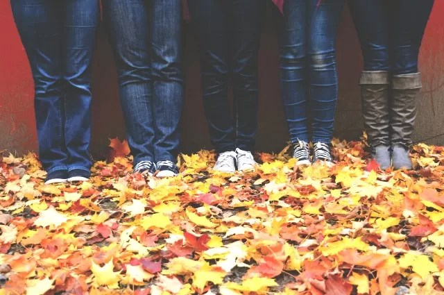 5 pairs of jeans in leaves