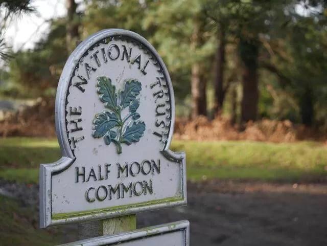 National Trust Half Moon Common