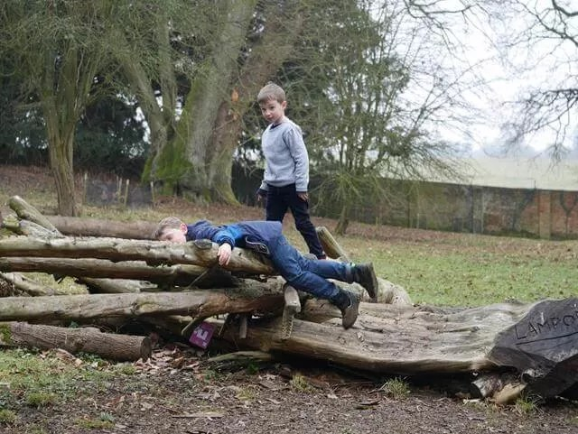climbing on logs at Stowe