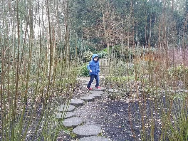 stepping stones in mottisfont winter garden