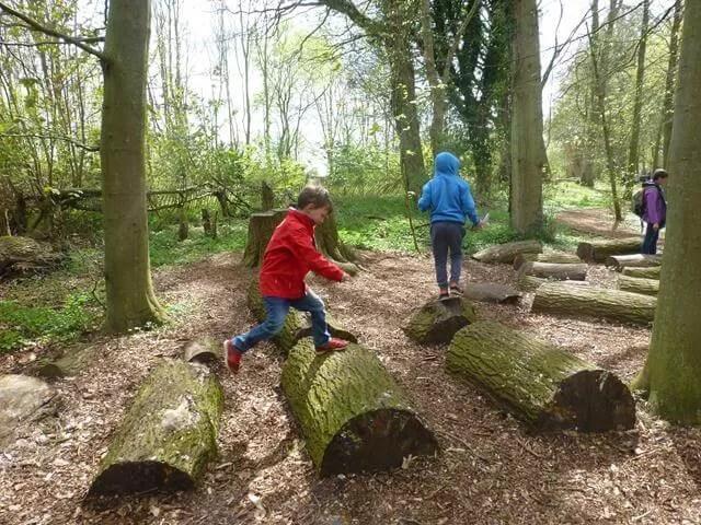 leaping across logs
