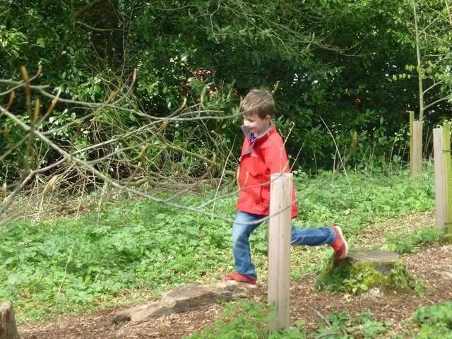woodland play