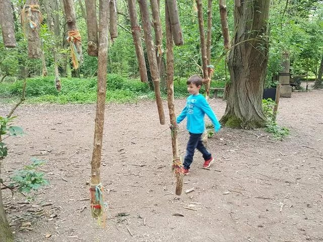 anglesey abbey natural playground