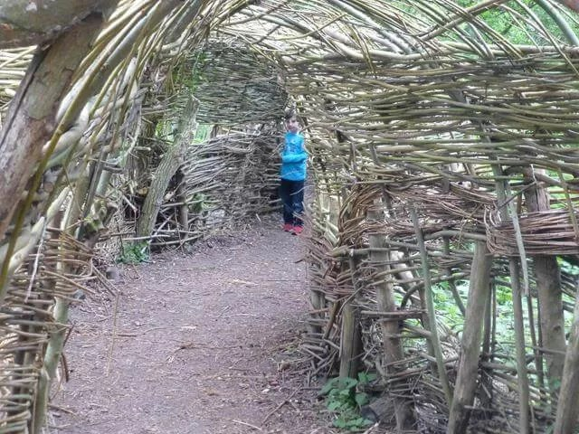 willow tunney at anglesey abbey