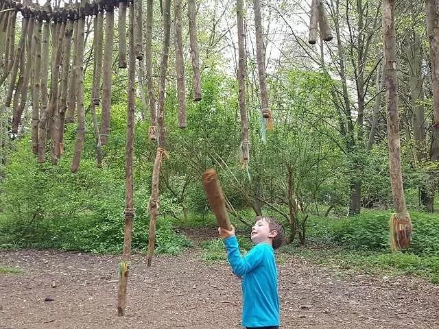 wooden tree xylophone
